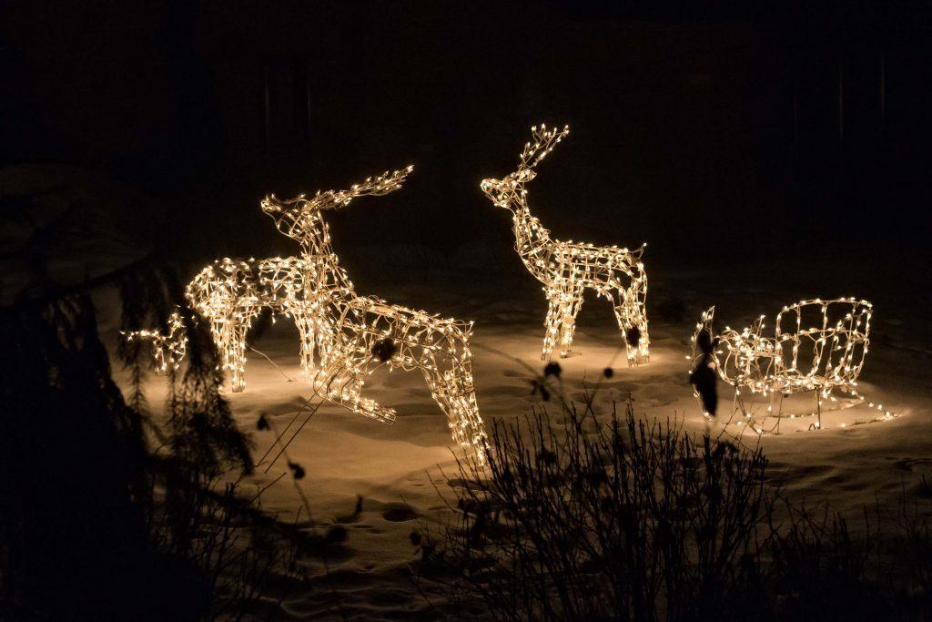 julbelysning utomhus renar